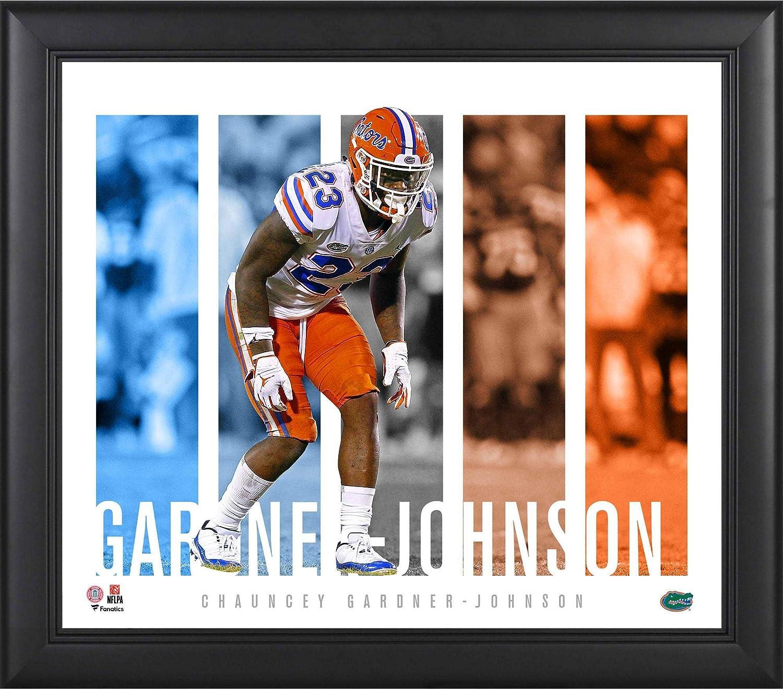huge discount 8bc63 13346 Chauncey Gardner-Johnson Florida Gators Framed 15