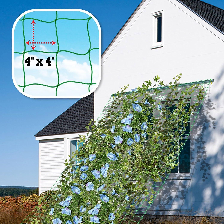 BenefitUSA Trellis Netting Plant Support Net for Climbing Plants Fruits Vine Vegetables Flowers and Veggie Garden Netting 6 x 12