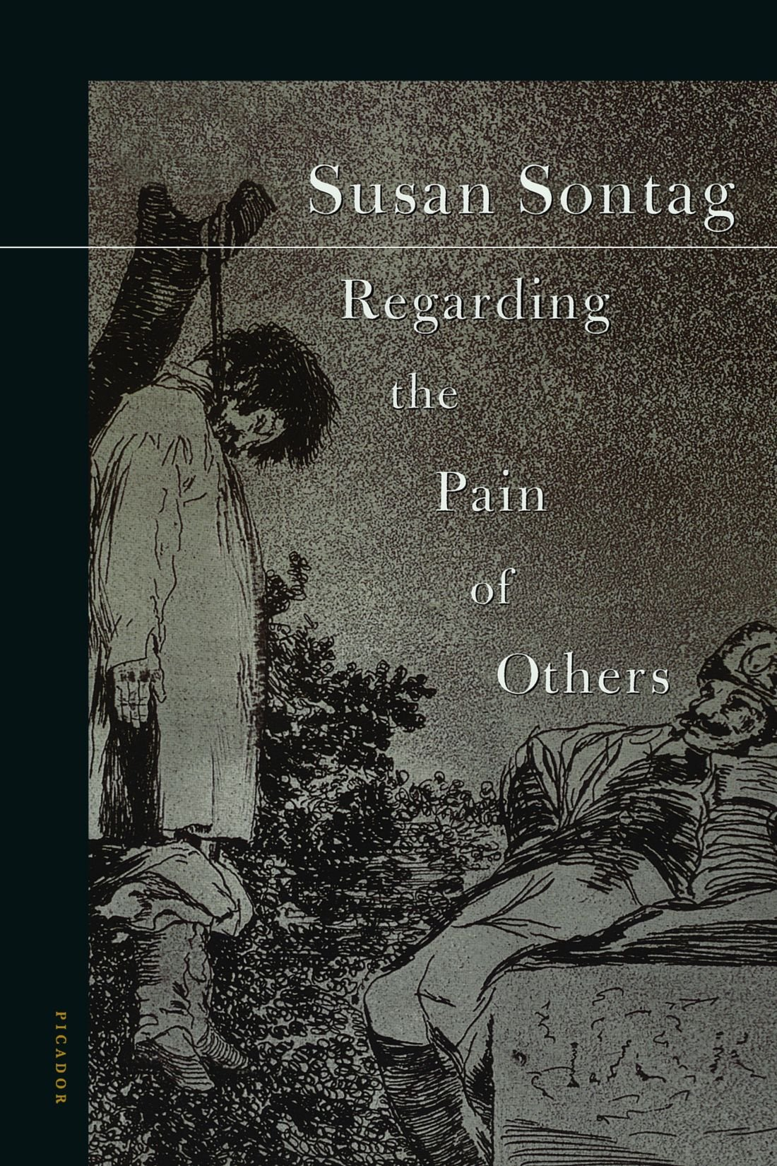 regarding the pain of others susan sontag amazon regarding the pain of others susan sontag 9780312422196 com books