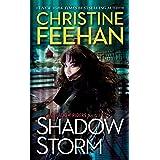 Shadow Storm (A Shadow Riders Novel)