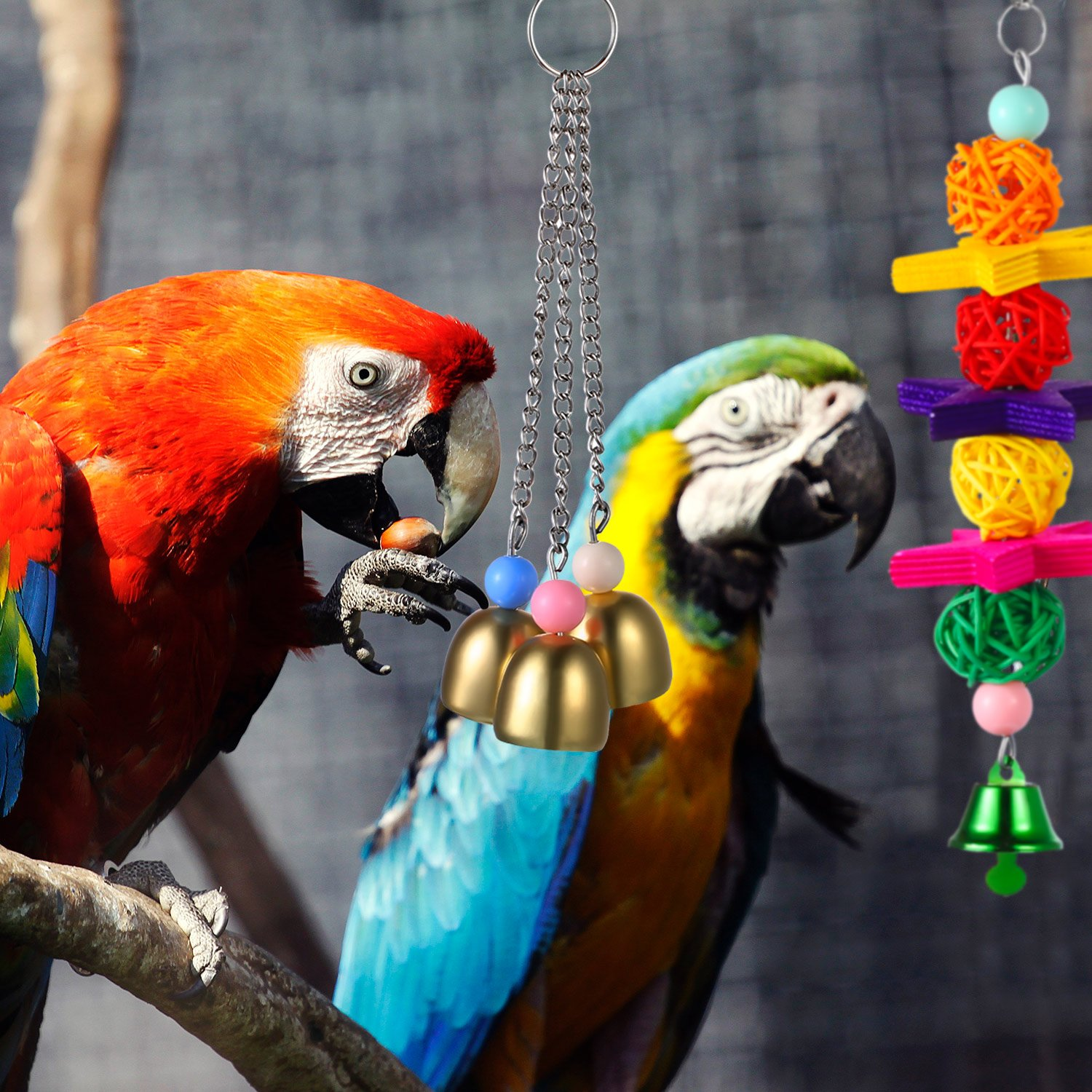 Zhehao 5 Pieces Bird Swing Toys Bell with Colorful Natural Wood Hammock Hanging Perch for Small and Medium Birds Parakeets Cockatiels Conures Macaws Parrots Love Birds Finches by Zhehao (Image #4)