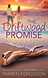 The Driftwood Promise (Sea Glass Cove Book 2)