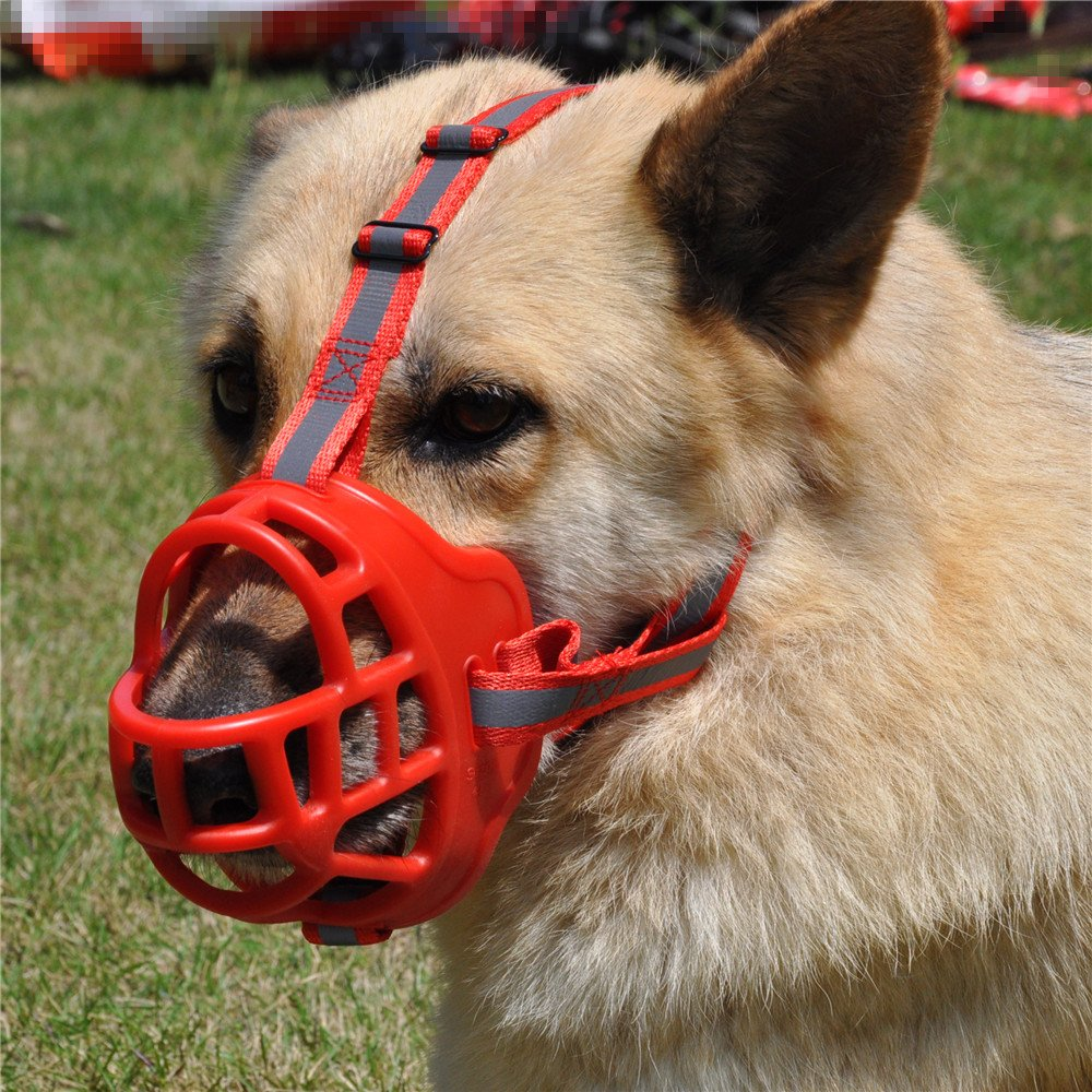 JYHY Soft Silicone Basket Dog Muzzles-Adjustable Breathable Biting Chewing Barking Training Dog mask For Small Medium Large Dogs,Red 4