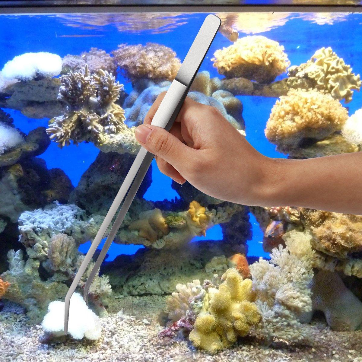 Amazon.com : UEETEK Aquarium Kit Tool Accessories Stainless Steel Aquarium Tank Water Plant Tweezers Scissors Tools Set Fish Starter Kits : Pet Supplies