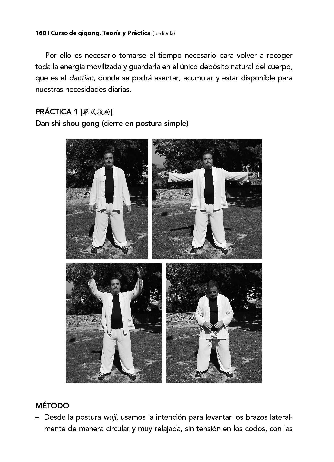 CURSO DE QIGONG. TEORÍA Y PRÁCTICA. VOLUMEN 2: Jordi Vilà i Oliveras: 9788420305899: Amazon.com: Books