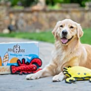 BoxDog - 4 Giant Seasonal Dog Boxes per Year Filled With Handmade Treats, Vegan Skincare, Dog Toys, Gear &