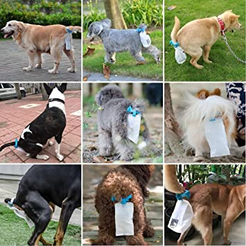 Amazon.com: 20 Bolsas de piqapoo perro bolsa de residuos ...