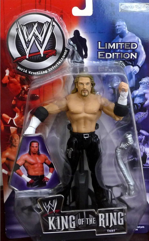 TEST WWE Wrestling King of the Ring PPV 2002 Figure by Jakks by Jakks Pacific