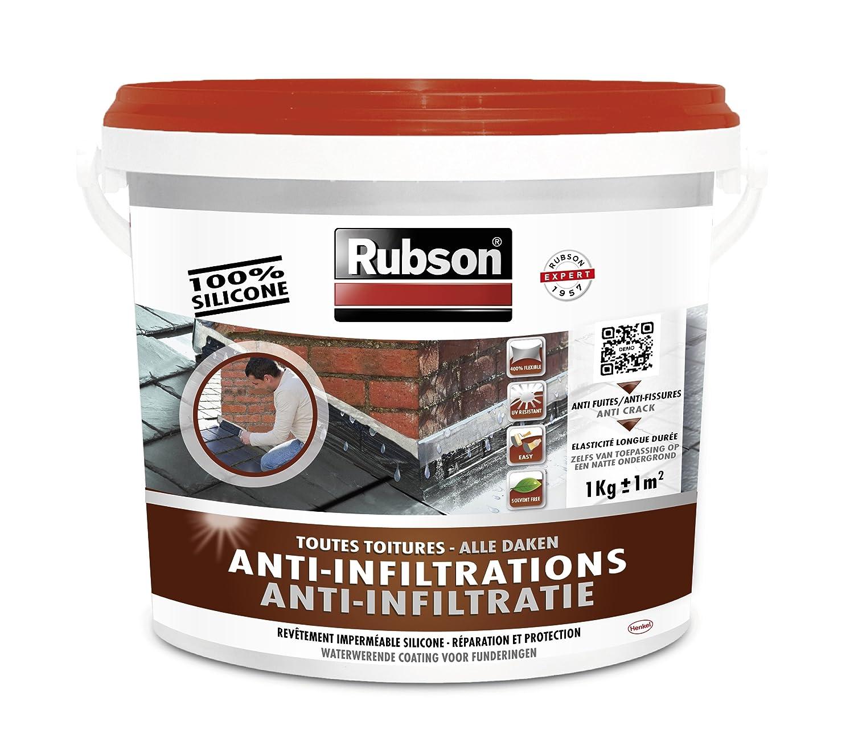 RUBSON 1384554 Stop Fuites Toutes Toitures (Incliné es & Plates) - Terre cuite - 1kg B008F8IGPK