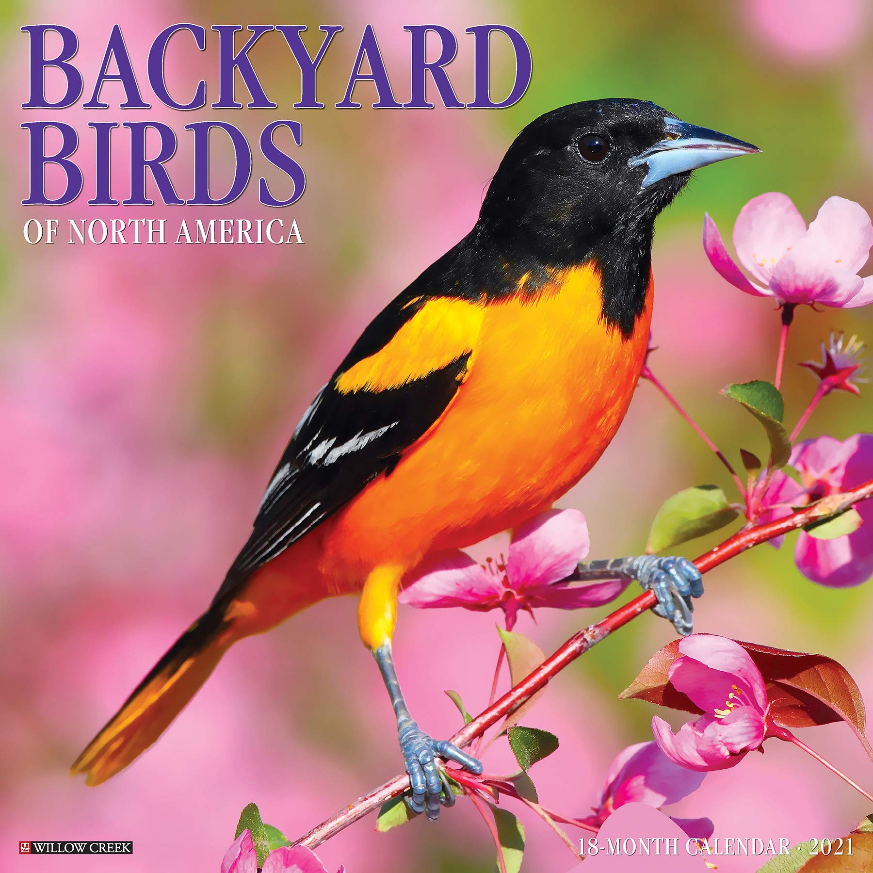 Backyard Birds 2021 Wall Calendar: Willow Creek Press