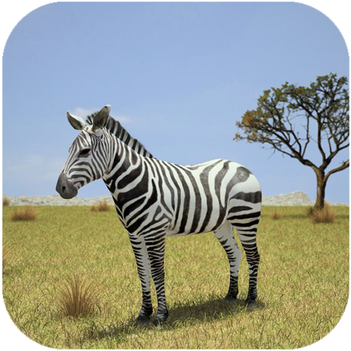 Ultimate Wild Zebra Simulator 2019]()