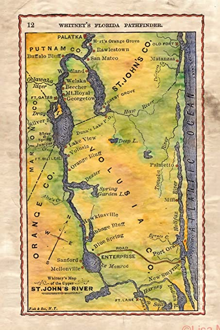 Map Of Upper Florida.Amazon Com Whitney S Pathfinder The Headwaters Of The St Johns