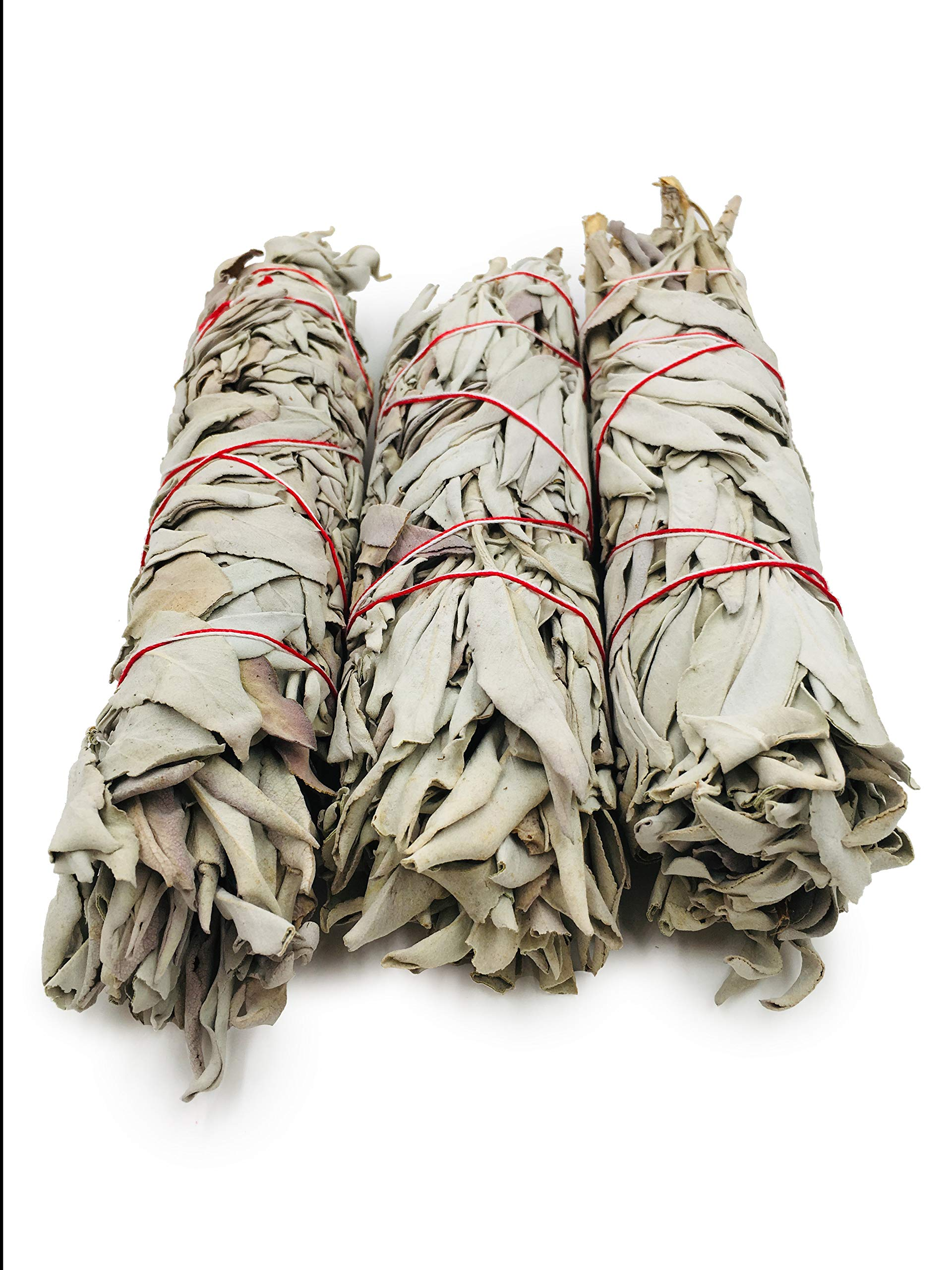 Alternative Imagination Premium, 7 Inch California White Sage Smudge Sticks. by Alternative Imagination (Image #2)