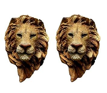 Amazoncom Best 2 Pack Perfect Lion King Safari Animal Fridge