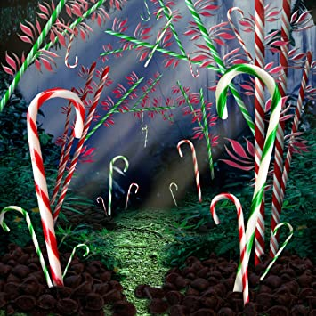Amazon Com Photography Backdrop Candy Cane Forest 10x10 Ft