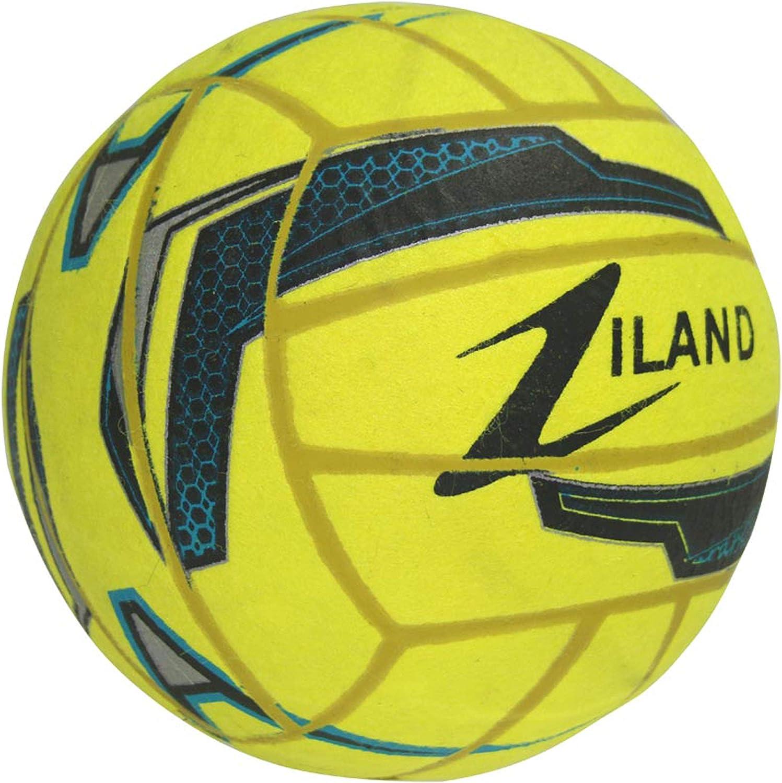 Ziland Pro - Balón de fútbol para Interiores (Talla 4), IT079835 ...