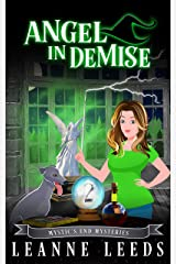 Angel in Demise (Mystic's End Mysteries Book 2) Kindle Edition