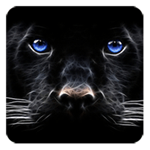 Black Panther Live Wallpaper Amazones Appstore Para Android