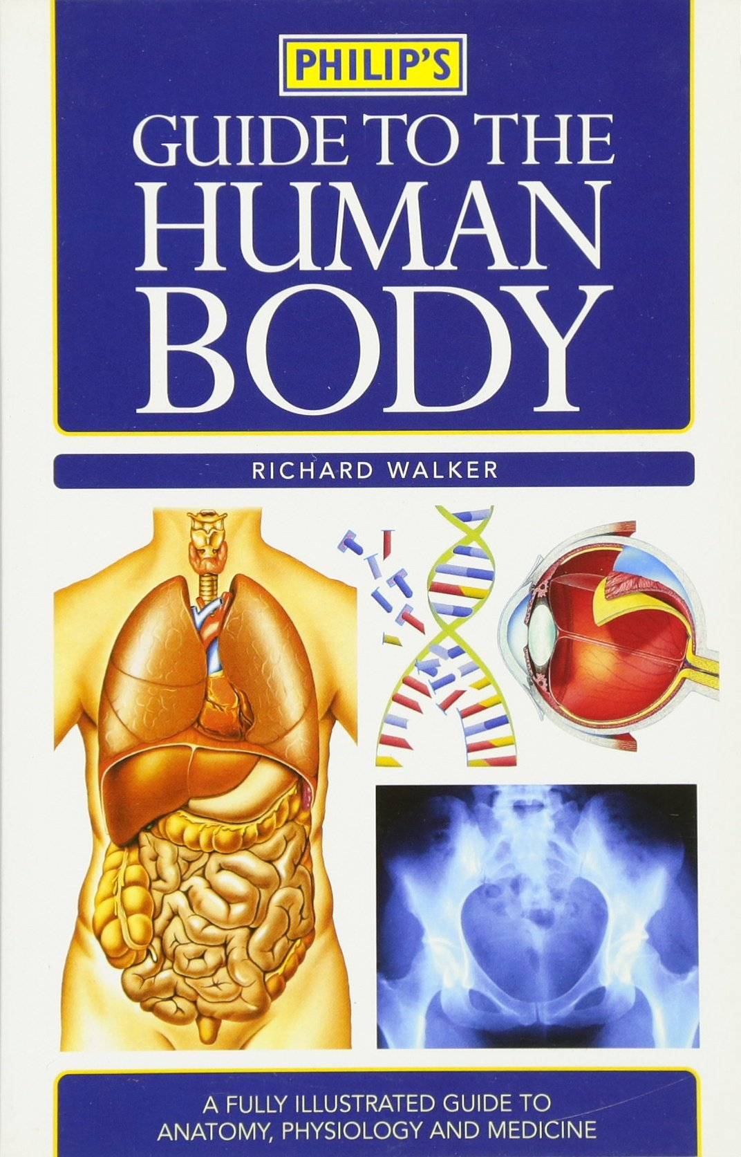 Guide to the Human Body: Richard Walker: 9780540090044: Amazon.com ...