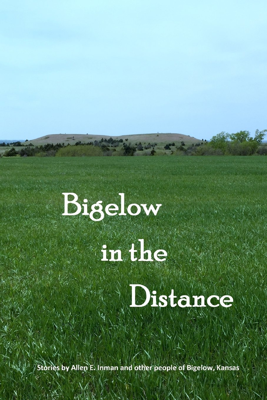 Download Bigelow in the Distance PDF