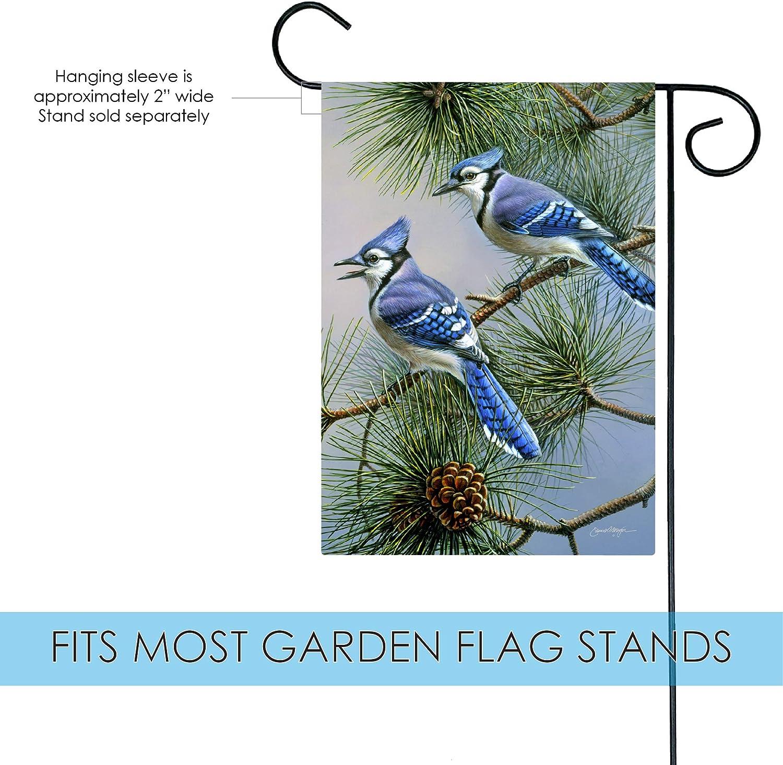 Toland Home Garden Blue Jay Duet 12 5 X 18 Inch Decorative Fall Winter Bird Pine Tree Garden Flag 1110433 Garden Outdoor