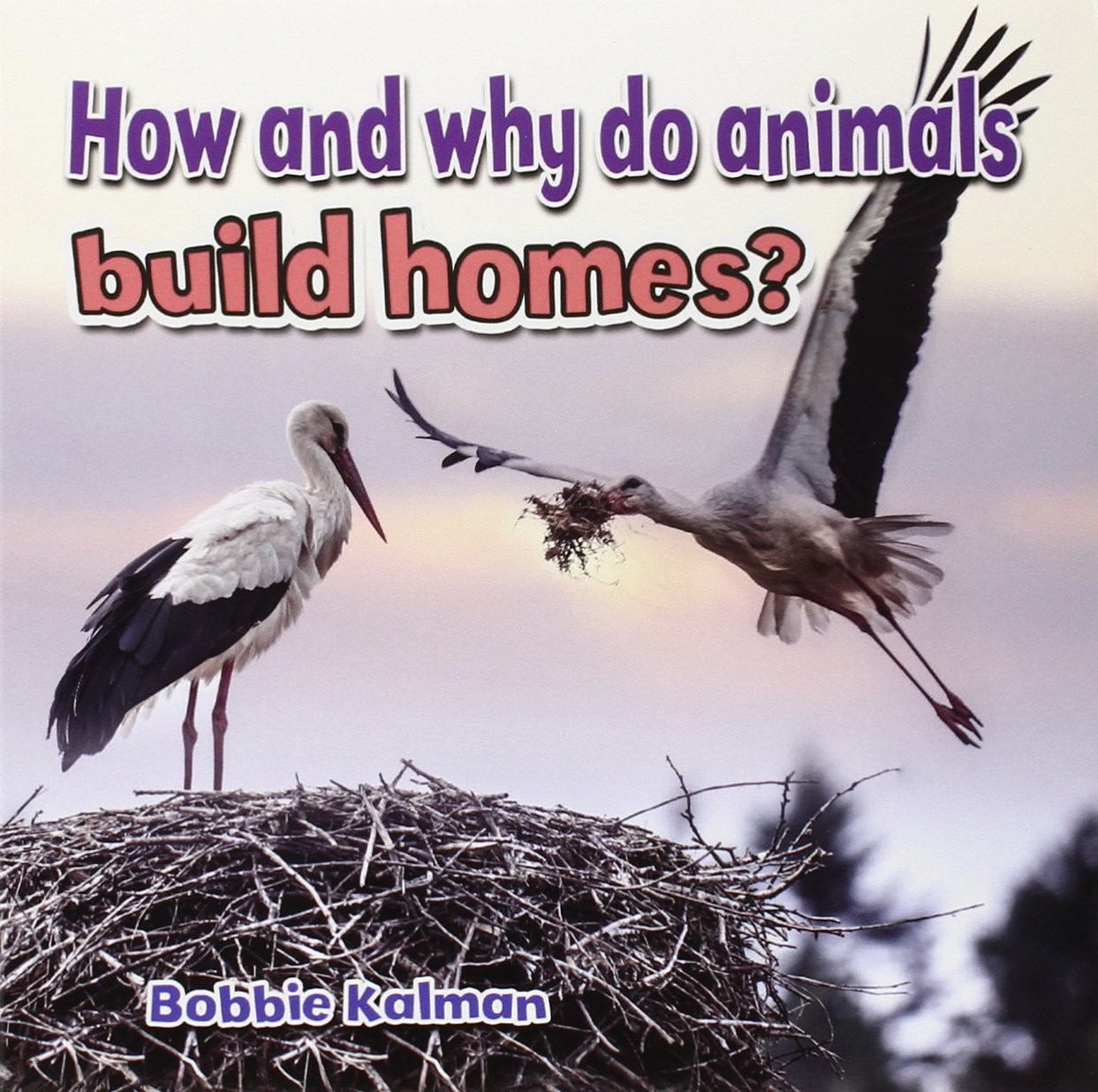 Read Online How and Why Do Animals Build Homes? (All About Animals Close-Up) pdf epub