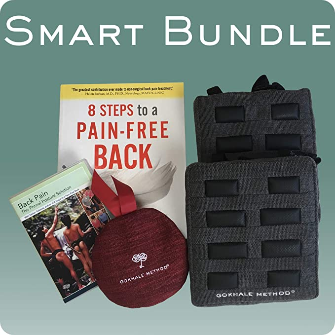 8 steps to a pain free back amazon