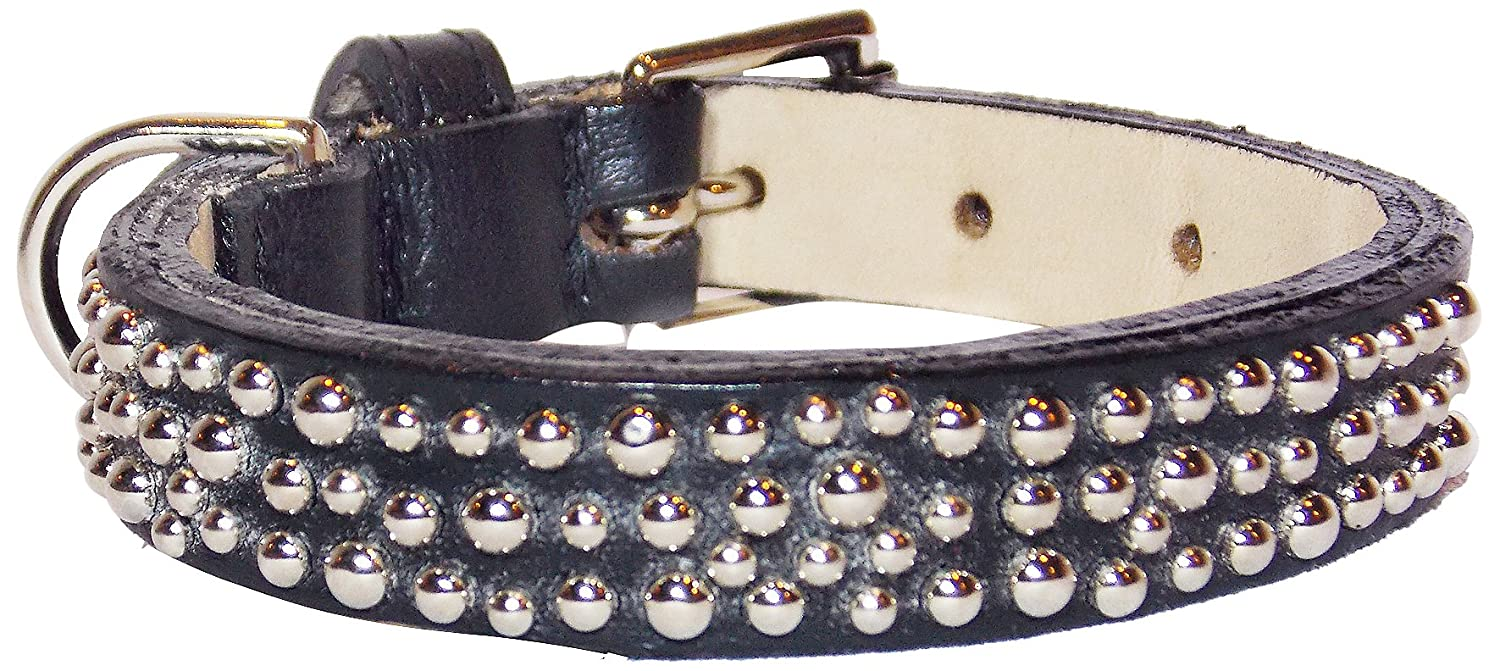 Domed Studs Straight Dog Collar, Large 14-17, Black with Domed Studs
