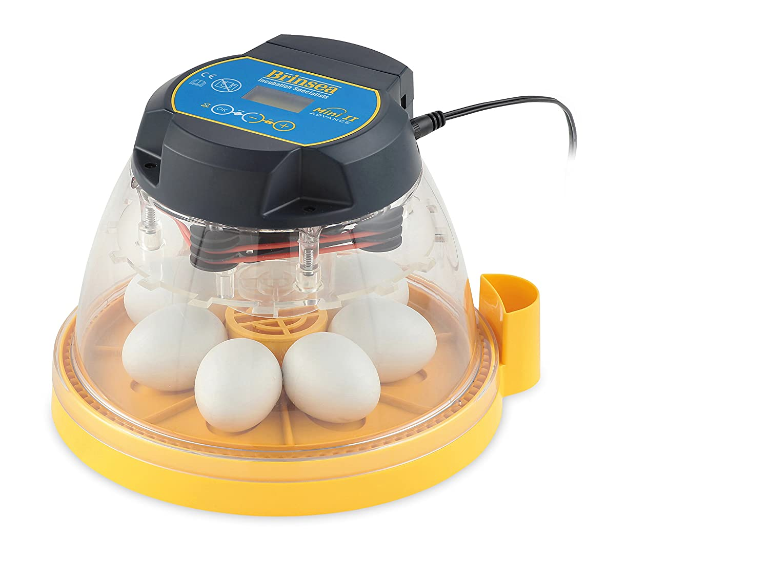B01N56NGS8 Brinsea Products Mini II Advance Automatic 7 Egg Incubator, One Size 81d-sr6NiuL._SL1500_
