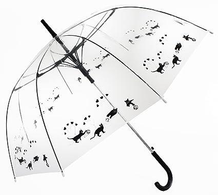 Gatos negros jugando paraguas palo transparente