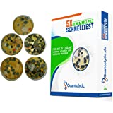 5x Schimmeltest Schnelltest - QUANTOLYTIC ® Schimmeltester für Wohnung für bis zu 5 Räume zur Einschätzung der Raumluftqualität und Schimmel Belastung der Raumluft