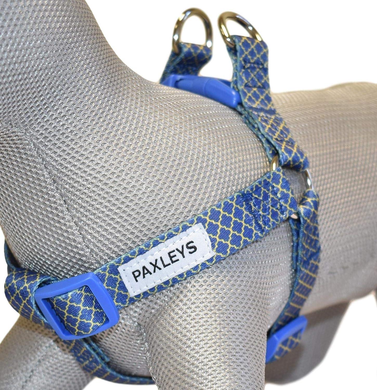 Paxleys Arnés para perro de lujo dorado y azul Art Deco tamaños ...