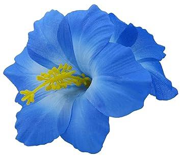 Amazoncom Double Hawaiian Hibiscus Flower Hair Clip Blue Beauty