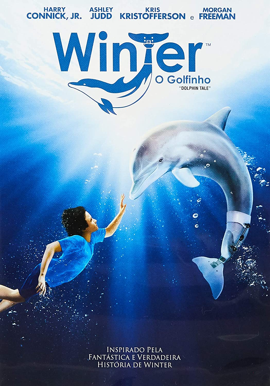 winter o golfinho dvd amazon com br winter o golfinho dvd amazon com br