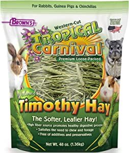 F.M. Brown's Tropical Carnival Natural Timothy Hay for Guinea Pigs, Rabbits, and Other Small Animals, with High Fiber for Healthy Digestion - 48 oz