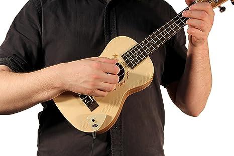 KNA pastillas Kna AP-2 – Pastilla para guitarra acústica con control ...