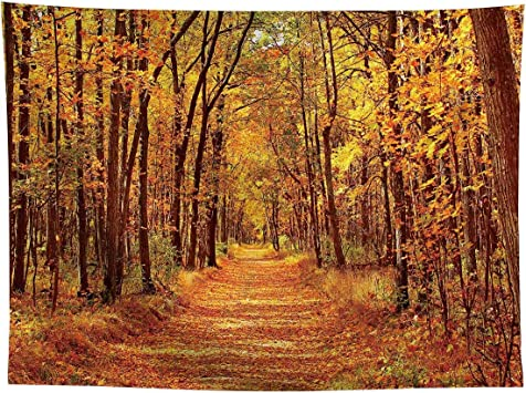 9x6ft Outdoor Autumn Forest Wedding Photography Backdrop Tall Trees and Golden Deciduous Leaves Cover The Filed Background Happy Vacation Leisure Life Studio Props