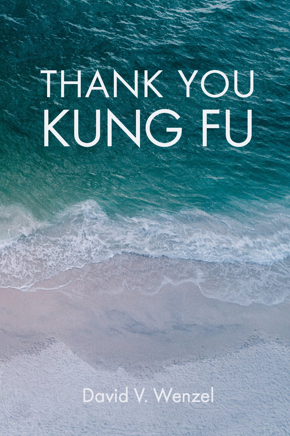 Download Thank You Kung Fu ebook