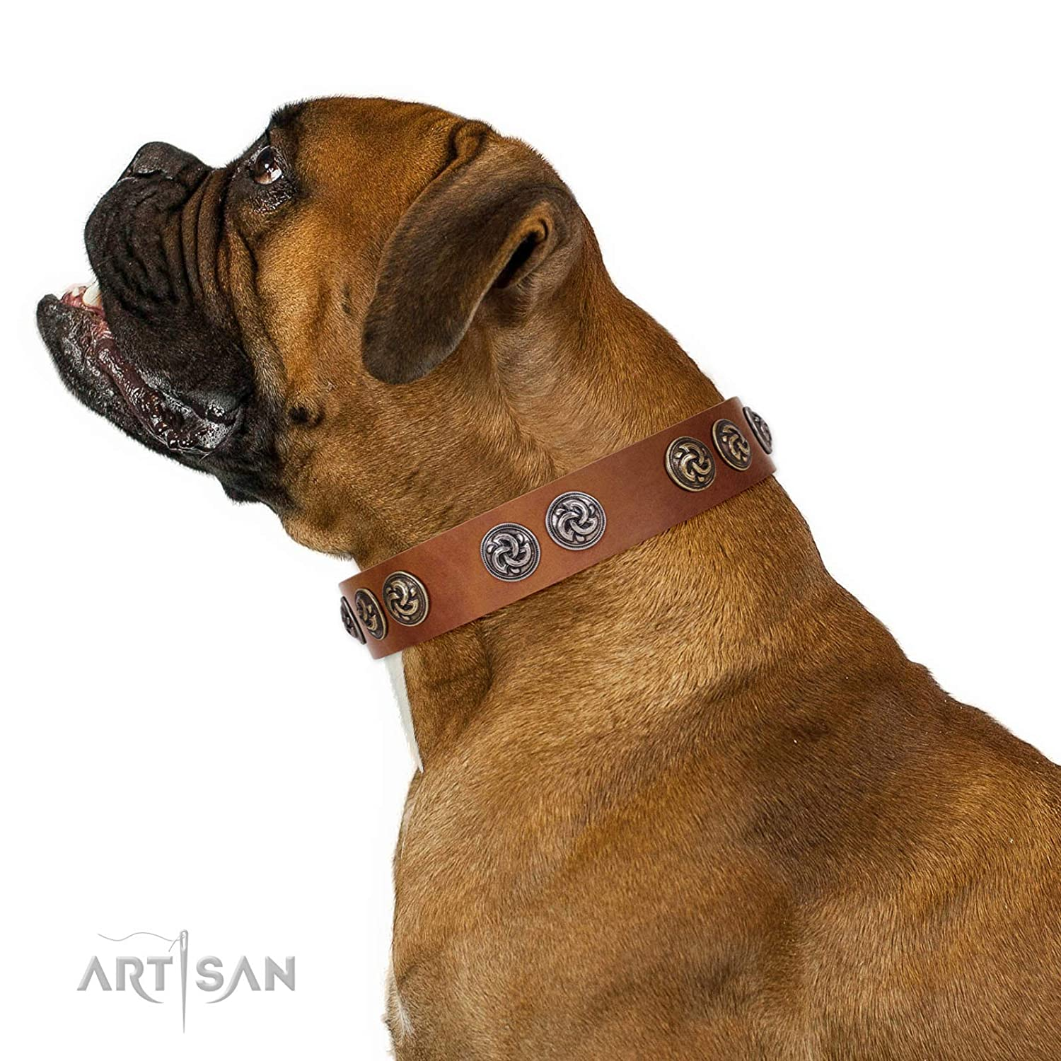 Fits for 27 inch (68cm) dog's neck size FDT Artisan 27 inch Luxurious Life Designer Tan Leather Dog Collar with Silvery and gold-Like Medallions 1 1 2 inch (40 mm) Wide Gift Box Included