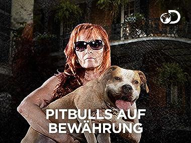 Amazonde Pitbulls Auf Bewährung Season 8 Ansehen Prime Video