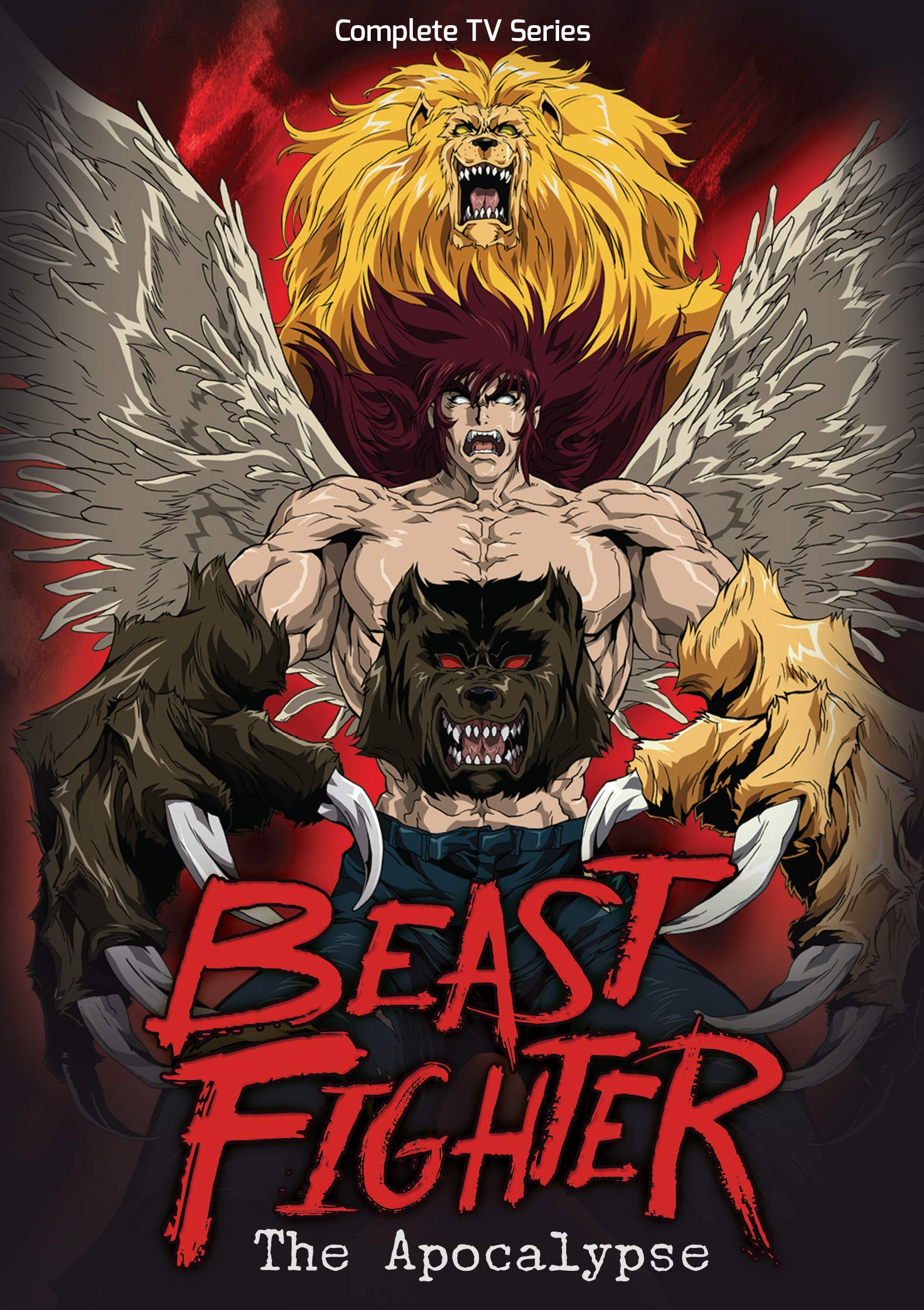 Beast Fighter: The Apocalypse Complete TV Series (Beast Fighter: The Apocalypse Complete TV Series) by Discotech Media