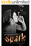 Spark (Fire on the Mountain Book 1)