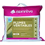 Blanrêve Lot de 2 Oreillers Plume Traditionnels 60 x 60