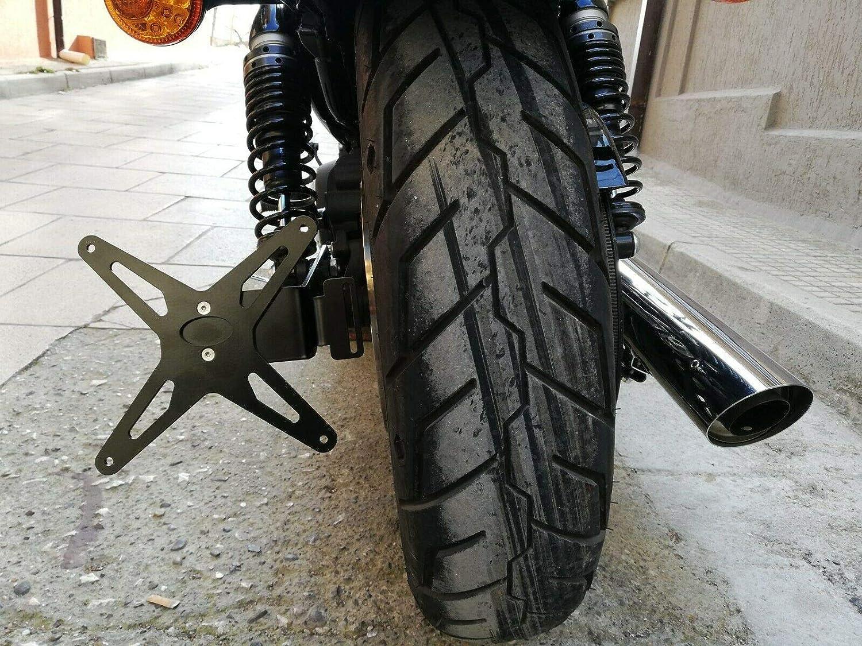 PortaTARGA Harley SPORTSTER targa laterale 883 1200 IRON 48 forty eight ROADSTER Custom Nightster