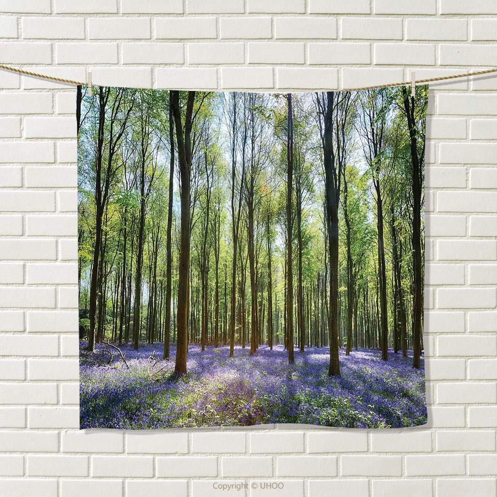 smallbeefly Woodland Decor Hand Towel Bluebells in Wepham Woods Landscape Flowers Rural Countryside Woodland Quick-Dry Towels Size: W 20'' x L 26''