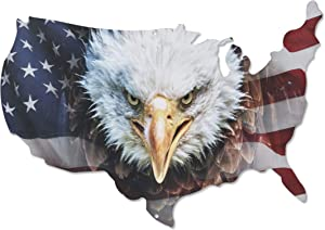 Next Innovations Metal Wall Art - American Flag Wall Decor - Patriotic Eagle Head on USA Outline - Handmade in The USA for Use Indoors or Outdoors