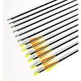 GPP 28-inches Fiberglass Archery Target Arrows - Practice Arrow or Youth Arrow for Recurve Bow