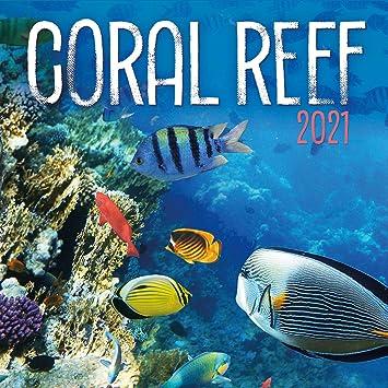 Pictures of Reef Calendar 2021
