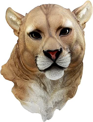 Ebros Gift Sarabi Large Lioness Head Wall Decor Plaque 16 Tall Taxidermy Art Decor Sculpture Female Pride Lion Wall Bust Plaque