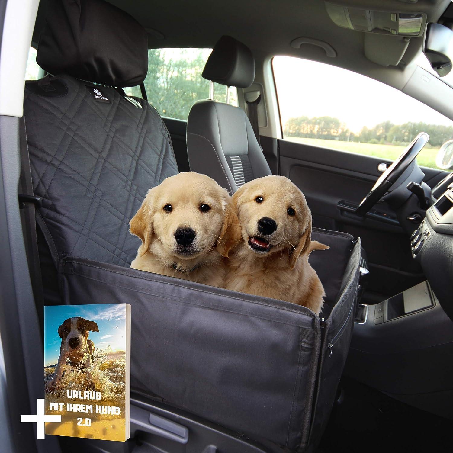 Nestor Gamble I Extra Stabiler 2 In 1 Hundesitz Hochwertiger Auto Hundesitz Für Kleine Bis Mittlere Hunde Hunde Autositz Mit Kopfstützenbezug Anschnallgurt Rückenlehnenschutz Haustier